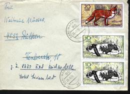 DDR  Lettre 1970 Renard Lapins - Hasen