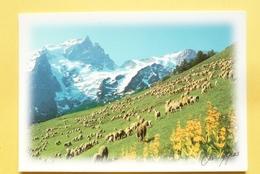 V10--73-savoie--images Des Alpes--montagnes-moutons-- - Francia