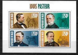 NIGER  Feuillet N° 1917/20  * *  ( Cote 16e ) Louis Pasteur  Medecine - Louis Pasteur
