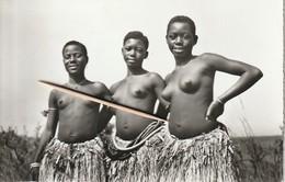 Congo-belge, Filles Wangatas, 2 Cans - Afrique Du Sud, Est, Ouest