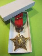 Médaille Commémorative/Campagne Rhin Et Danube  1944-1945/ Premiére Armée Française/avec étui / 1944-1945   MED335 - France