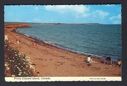 Beach South Shore Near Hampton Prince Edward Island PEI Canada - Ile Du Prince-Édouard