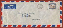 Luftpost, Gnu, Cape Town Kaapstad Nach Calw 1952 (91824) - Storia Postale