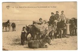 Les ânes Et Les Chevaux Pour La Promenade Sur La Plage - Postée De Blankenberghe - Edit. A. Scheers - 2 Scans - Belgique