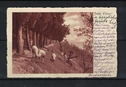 Frohe Ostern ! , 1937 , Tschechoslowakei , WURBO / 2453 - Pascua