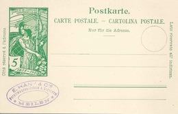 """PK 31  UPU  """"Häny, Metallwaren/Giesserei, Meilen""""           1900 - Interi Postali"""