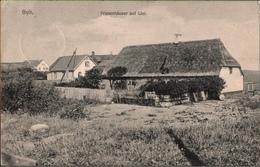 ! Alte Ansichtskarte Sylt, List, Friesenhäuser, 1914, Einkreisstempel, Schleswig-Holstein - Sylt