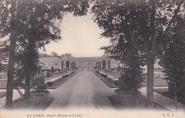 49 Château De La Lorie, Ségré - Castelli