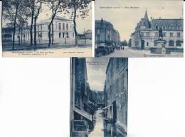 71 - Lot De 3 Cartes Postales Différentes De MONTARGIS ( Loiret) - Cartes Bleutées - Voir Les Scans - Montargis