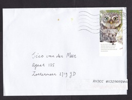 Netherlands: Cover, 2020, 1 Stamp + Tab, Stone Owl, Bird, Sorting Label (damaged: 2 Small Stains) - 2013-... (Willem-Alexander)