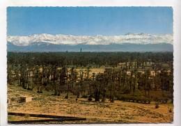 Morocco, MARRAKECH, Marrakesh, Palmeraie Et Grand Atlas, Postcard [24004] - Marrakesh