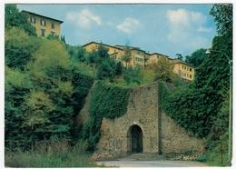 VOLTERRA? - PORTA DI DOCCIOLA - PISA - 1978 - Pisa