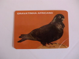 Birds Pigeon Pombo Gravatinha Africano Portugal Portuguese Pocket Calendar 1986 - Klein Formaat: 1981-90