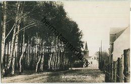 Wahlitz - Heilstättenweg - Foto-Ansichtskarte 20er Jahre - Gommern