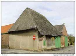 HAALTERT (O.Vl.) - Molen/moulin - Olierosmolen Aan De Langdries (18de Eeuw) - Fraaie Prentkaart, Beperkte Oplage - Haaltert