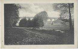 Vielsalm.   -    Le Grand Pont Du Chemin De Fer.   -   Reklame! - Vielsalm