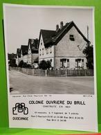 Photo Original, ARBED, Dudelange. Colonie Ouvriere Du Brill. Construite En 1921. 18x12 - Dudelange