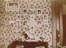 """Photo Vers 1900 LYON - Souvenir Du 6 Rue De La Victoire, """"Léonce Charpentier"""", Crâne Humain (A219, Ww1, Wk 1) - Lyon"""