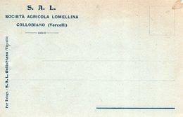 COLLOBIANO - Cartolina Commerciale SOCIETA' AGRICOLA LOMELLINA E Marca Da Bollo Cent 20 - F. PICCOLO - 1921 - (rif. S76) - Vercelli
