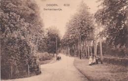 237834Doorn, Berkenlaantje (poststempel 1911) - Doorn