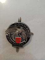 13334  INSIGNE MILITAIRE   DRAGO - Badges & Ribbons