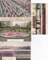 2389      42           Hyacinthenvelden Bij Haarlem 1904 – Tuinversiering Met Bloembollen –Hyacinthenvelden - Altri