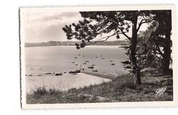 22 Saint Cast Le Port Pris De La Pointe De L' Isle CPSM PF Cachet 1952 - Saint-Cast-le-Guildo