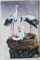 CPA FANTAISIE Bébé Dans Un Nid Avec 2 Cigognes - Bébés
