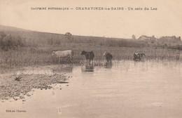 38 - CHARAVINES LES BAINS - Un Coin Du Lac - Charavines