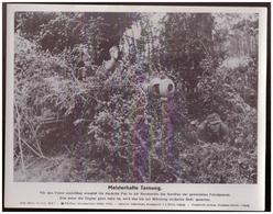 Dt- Reich (007844) Propagandasammelbild, Bilderdienst Weber Leipzig, SS PK Foto, Meisterhafte Tarnung - Briefe U. Dokumente