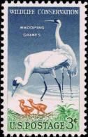 1957 USA Wildlife Conservation - Whooping Crane Stamp Sc#1098 Kid Wetland Cranes Bird Mother - Water