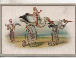 Vieux Papiers.Chromo.cigogne Bébés Grand-bis.Biscuits Germain.11,5 X 7,7 Cm - Confiserie & Biscuits