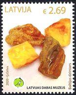 Latvia Lettland Lettonie 2020 (04) Museum Of Natural History - Amber - Latvia
