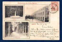 Arlon. Etablissement Des Frères Maristes. Le Parc. L'école Professionnelle Et La Promenade. 1899 - Arlon