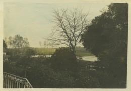 Beautour . 3 Vues Prises De La Propriété Tertrais . Prairies De La Sèvre , Vers La Morinière . Colorisées . 1899 . - Photos