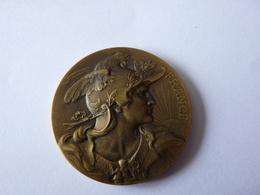 Belle MédailleCOMITÉ / CENTRAL / DES / CHAMBRES / SYNDICALES.  France - France