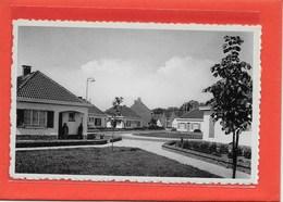 TURNHOUT: STE-BEGGAPLEIN - Turnhout