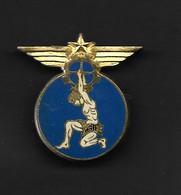 INSIGNE ARMEE DE L'AIR LIMOGES DRAGO PARIS - Luftwaffe