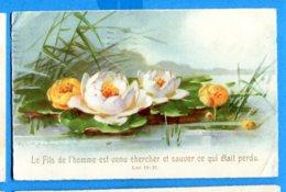 NY285, Nénuphare, Seerosenblatt, Lily Pad, Circulée 1930 - Fleurs