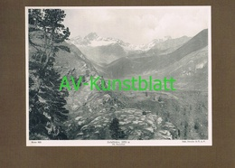 266 Zufallhütte Rifugio Nino Corsi Sektion Dresden Lichtdruck 1908 !! - Historische Documenten