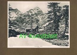 287-3 Lienzer Hütte Sektion Lienz Winterbild Lichtdruck 1908 !! - Documents Historiques