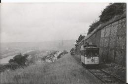 Photo - Tramway De Rouen - Voie Normale - Ligne 19 - Hôtel De Ville Mesnil Esnard - Treni