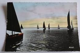 Boulogne Sur Mer - Regates - 1973 - Boulogne Sur Mer