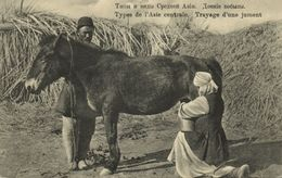 Uzbekistan Russia, TASHKENT, Types Central Asia, Milking A Mare (1910s) Postcard - Uzbekistan
