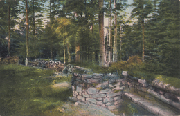 CARTE ALLEMANDE - GUERRE 14-18 - VOSGES - VOGESEN - TRANCHÉE ALLEMANDE AVEC POSTE D'OBSERVATION - Guerre 1914-18
