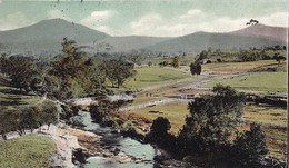 MOUNT TIMBERTOP MANSFIELD VICTORIA / RARE / CIRC 1908 - Australia