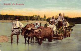 Saluti Din Romania - Anim. - Maier & Stern N° 1156 - Romania