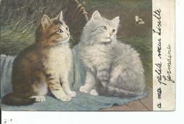 Les Chats - Cats