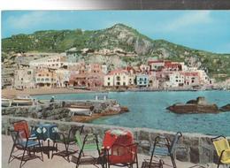 S.ANGELO  D'ISCHIA   PANORAMA-VIAGGIATA-NO-1965-FG-MT2784 - Napoli (Naples)