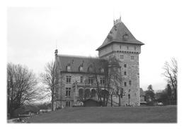CONTAMINE-SUR-ARVE - Château De Villy - Contamine-sur-Arve